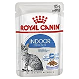 ROYAL CANIN Indoor Sterilised Gatos, Bocaditos en Gelatina, Caja 12 x 85 gr