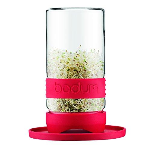 Bodum, Bicchiere per coltivare germogli, Rosso (rot)