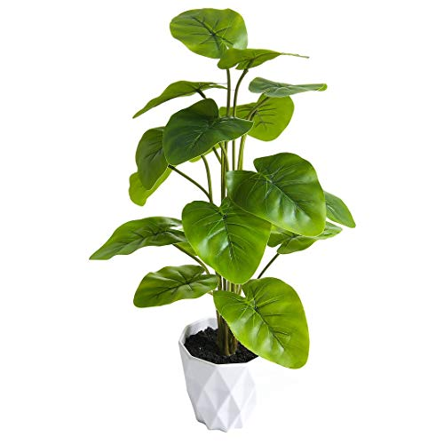 """SPKTCULR 20"""" Artificial Elephant Ear Plants Bonsai, Faux Potted Small Buddha's Ear Tropical Green Tree for Desktop in Home Office Décor and Indoor Outdoor"""