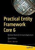 practical entity framework core 6: database access for enterprise applications