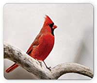 枢機Mouseのマウスパッド、木の枝の上に立っている男性の北アメリカの山の鳥カラフルな野生動物、標準サイズの長方形の滑り止めラバーマウスパッド、,色のトープ