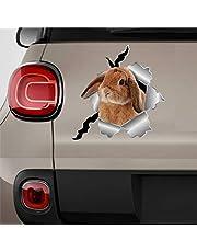 Konijn auto Sticker, Vinyl Auto Decal, Decor voor Venster, Bumper, Laptop, Muren, Computer, Tumbler, Mok, Beker, Telefoon, Vrachtwagen, Auto Accessoires
