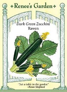 Squash - Zucchini - Raven Seeds