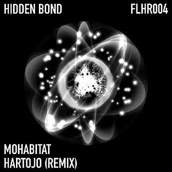 Hidden Bond