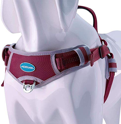 ThinkPet No Pull Harness Breathable Sport Harness - Escape Proof/Quick Fit Reflective Padded Dog Safety Vest with Handle Back/Front Clips, Easy for Walking Training M Red