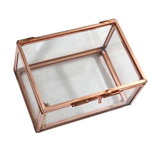 MagiDeal Geometrisches Glas Terrarium Box Schmuckschatulle Glas Sukkulente Pflanzgefäß Deko Rechteck Form - Roségold, 10 x 7 x 6 cm
