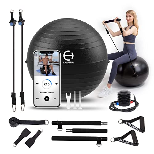 Exercise Ball 65 cm with Stainless Steel Pilates Bar - Yoga Ball Chair & Balance Ball for Pregnancy, Birthing Therapy & Exercise - Stability Ball for...