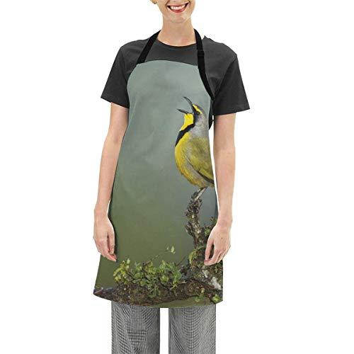 N\A Schürzen verstellbare Lätzchen Schürze Kochküche, südafrikanische Fauna Bokmakierie Vogelruf Hören Sie Wild Nature Trees Forest, für Frauen Männer Chef
