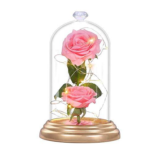 Rosa Encantada Kit La Bella y La Bestia, Eterna Rosa LED Artificial Flores Luz Elegante Cúpula de Cristal con Base Pino Luces por Pila Regalos Mágicos para Día de San Valentín Cumpleaños Boda