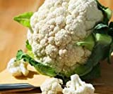 Cauliflower Self Blanche...image
