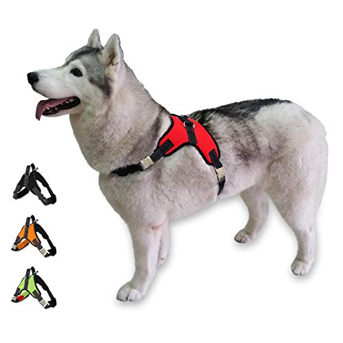 Cosy Meadow Escape Proof Dog Harness - Metal Buckle Clasp | with Car Seat Belt Lease & Sturdy Handle | No Choke | Padded Comfortable Soft Sports Vest | 2019 Improved Ver | Prime | Red Medium Breed
