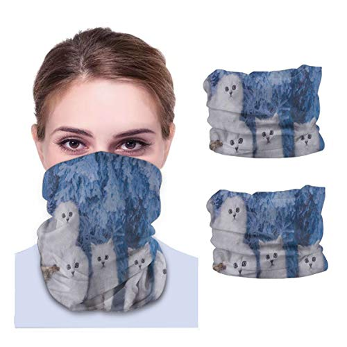 SLHFPX Winter White Cat Kitten Neck Gaiter Face Mask Set of 2 Bandana Anti-Dust Marks Windproof Neck Warmer for Outdoor Sports