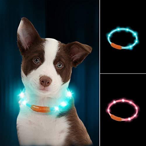 LaRoo led Hund leuchthalsband Leuchtend USB aufladbar hundehalsband Längenverstellbarer wasserdicht für kleine,Mittleren und Großen Hunde und Katzen - 3 Modus
