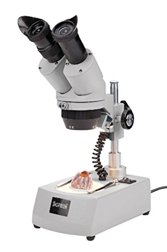 2/CS - Stereo Microscope Binocular - Boreal Science Student Stereomicroscopes - Each