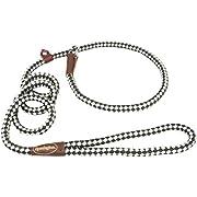 Coastal Pet Products DCPR0216GRW Nylon Remington Rope Slip Dog Leash, 6-Feet, Green/White