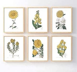 Ink. Inc. Botanical Prints - Yellow Flowers - Set of 6 unframed 5x7