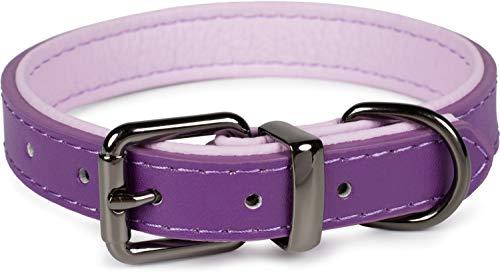 Puccybell Hundehalsband 2 farbig mit Leder, klassisches Halsband in Kontrastfarben für kleine, mittelgroße und große Hunde HB004 (S, Lila)