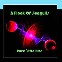 Pure '80s Hits by A Flock Of Seagulls