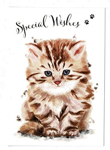 Algemene verjaardagskaart 'Speciale wensen' met schattig Cat ontwerp