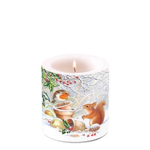 Ambiente Weihnachten Kerze Robbin & Eichhörnchen 7,6cm Stumpenkerze 8cm hoch