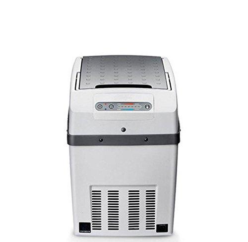 SL&BX Mini-koelkast, voor in de auto, 24 V, vrachtwagen, koelkast, mini-woonhuis, kleine koelkast, vrieskast, koelkast en vriezer, voor thuis, op kantoor, in de auto