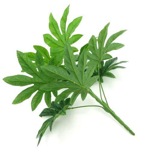 HONIC 15,5 cm x 14,5 cm 9-Blätter / 1Pc Künstliche Grünpflanze Fatsia Blatt Simulation Bonsai Home Decor Fatsia Blatt Simulation Naturgetreue