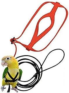 D-4PET Bird Harness - Anti-bite Flying Training Rope Parrot Bird Pet Leash Kits Ultralight Harness Leash Soft Portable Pet Playthings