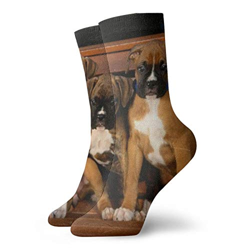 Dogs 4Unisex Moda, Novela, Individual, Suave, Deportes y Ocio Calcetines
