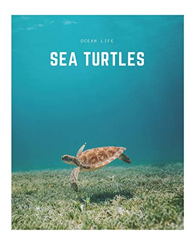 Sea Turtles: A Decorative Book │ Perfect for Stacking on Coffee Tables & Bookshelves │ Customized Interior Design & Home Decor (Ocean Life Book Series)