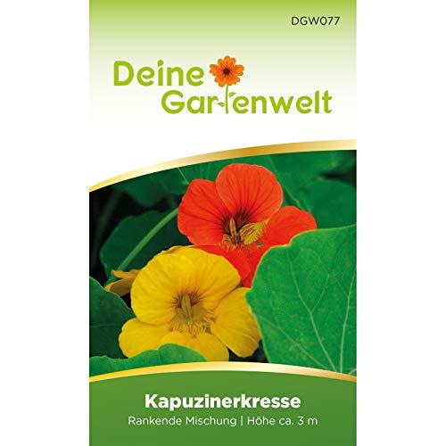Kapuzinerkresse Rankende Mischung Samen | Essbare Blüten | Tropaeolum majus Saatgut | Salatblume