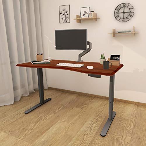 Flexispot Höhenverstellbarer Elektrisch Schreibtisch, 3-Fach-Teleskop. Mit Memory-Steuerung und Softstart/-Stop (Silber+Mahagoni)