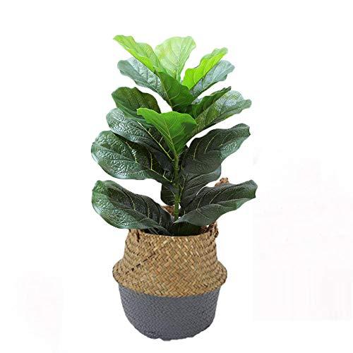 Yipianyun Künstlicher Bambus Oder Ficus Kunstpflanze Kunstbaum Zimmerpflanze Deko, Zimmerpflanze Künstlich Kunstbaum Birkenfeige,Grau,70cm