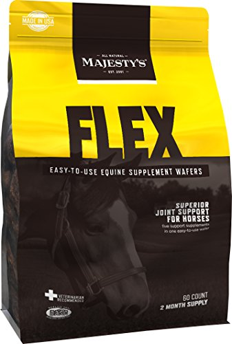 Best Equine Joint Supplement For The Money