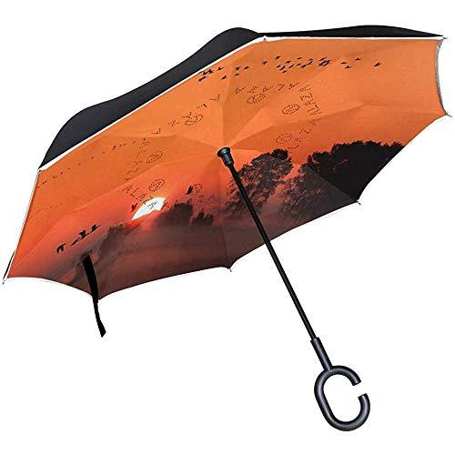 Alice Eva omgekeerde paraplu, natuurlijke zonsondergang-vogel-romans, dubbele laag voor auto