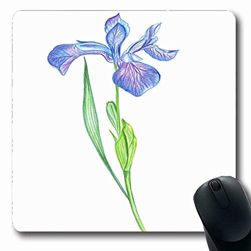 Jamron Mousepad OblongBlue Sch枚ne Zeichnung Farbige Iris Blumenstifte Naturparks Gr眉ne Sch枚nheit Bl眉te auf botanischen rutschfesten Gummi Mauspad B眉ro Computer Computer Laptop Mat