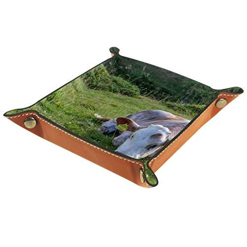 Caja de almacenamiento pequeña, bandeja de valet para hombre,Animales Vaca Prado Ganado Lechero,Organizador de cuero para llaves de caja de monedas