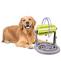 Golden Retriever Shown With Puzzle Feeder.