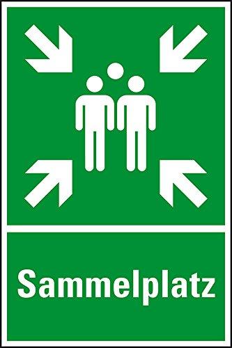 LEMAX® Rettungs-Kombischild Sammelstelle, Sammelplatz, ASR/ISO, Kunststoff, 400x600mm