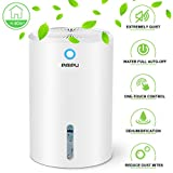 Dehumidifier For Basements Review and Comparison