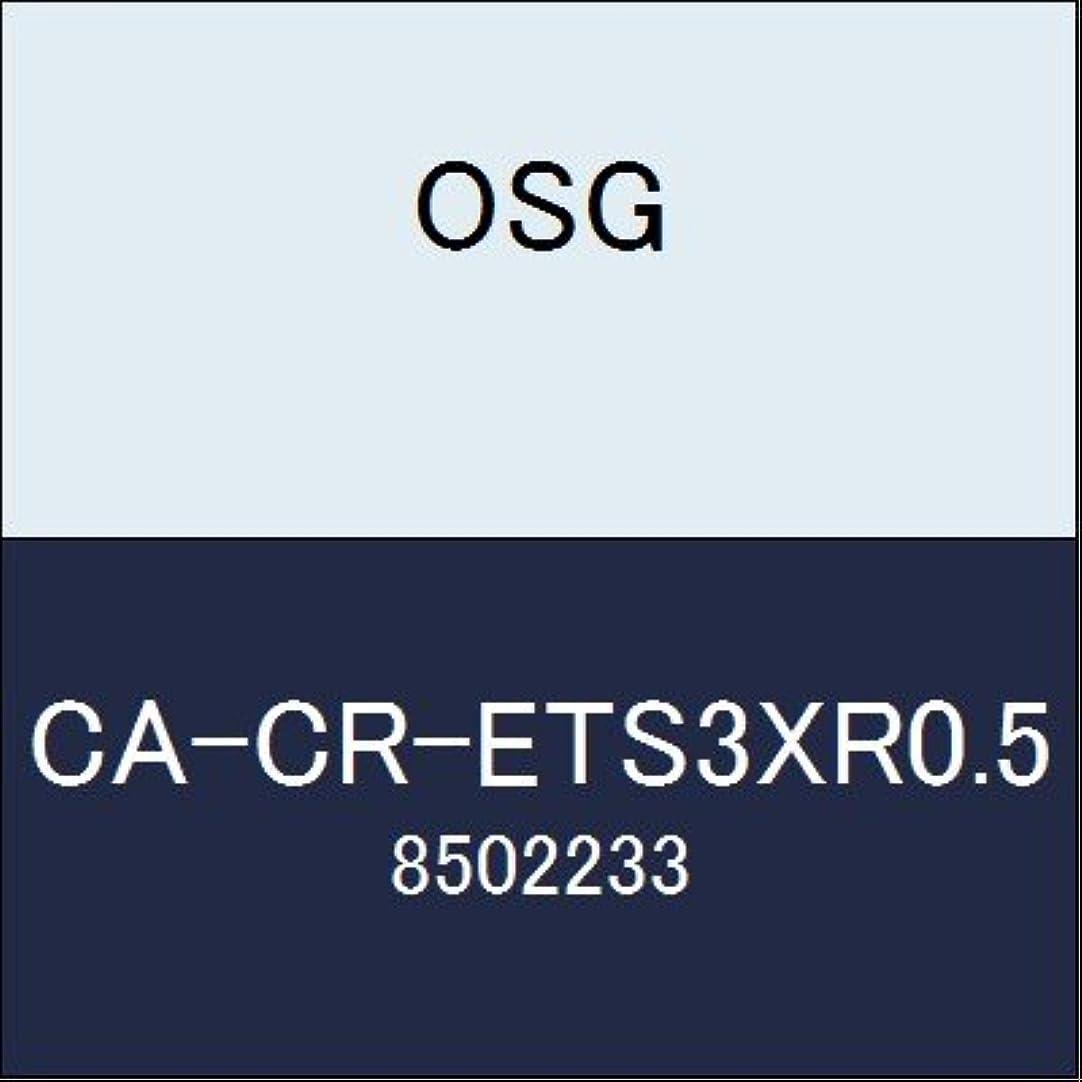 バルコニー暴行作成者OSG エンドミル CA-CR-ETS3XR0.5 商品番号 8502233