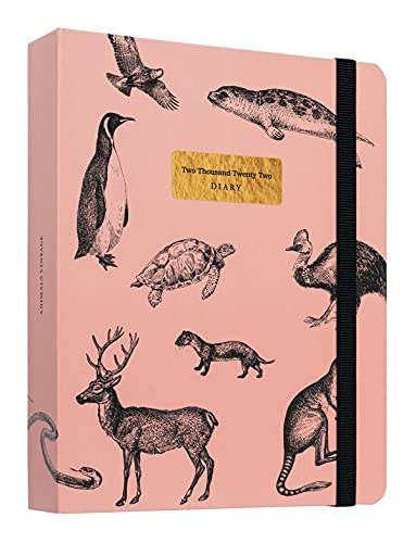 Kokonote Agenda Settimanale 2021 2022 Animals Vintage Premium Edition, Agenda 17 mesi da agosto 2021 a dicembre 2022, Adatto per scuola, lavoro e tempo libero, 20x16,5 cm