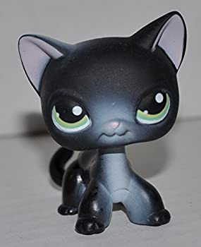 Shorthair Kitten #336  4 Paws  Black Green Eyes White Ear nose chest  - Littlest Pet Shop  Retired  Collector Toy - LPS Collectible Replacement Single Figure - Loose  OOP Out of Package & Print