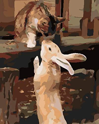 DIY pintura al óleo de lienzo Gato conejo Adecuado para adultos, niños y principiantes, use pinceles y pinturas para pintar con bricolaje por número.40 x 50 cm Sin Marco