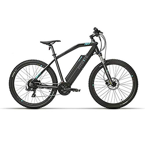 Fitifito MT29 Elektrofahrrad Mountainbike E-Bike 48V 250W Heckmotor; 48V13Ah 624W Lithium-Ionen mit USB Anschluss