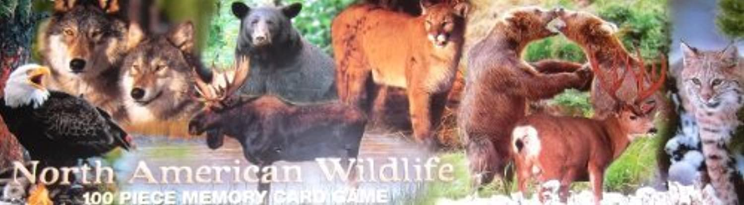 North American Wildlife 100 Piece Memory Card Game by Impact
