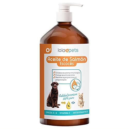 Aceite de Salmon para Perros –Gatos–Caballos-Hurones 100% 1 L – Aceite Salmon Escocés Perro con Omega 3 y 6, Vitamina E, Antioxidantes – Promueve La Salud de los Animales