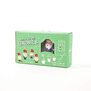 Gift Republic Gnomes Plant Multi Colour
