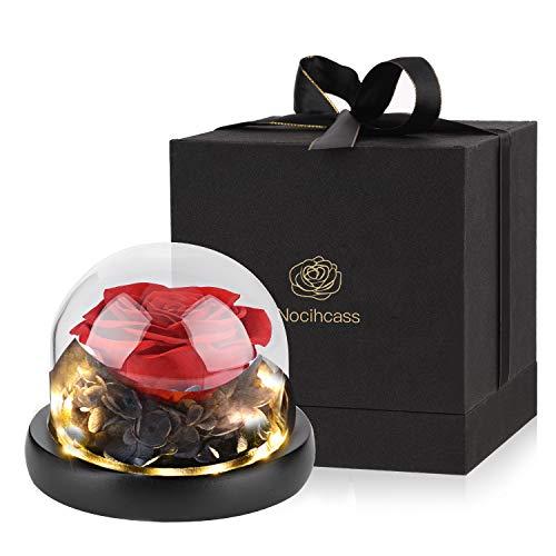 Rosa eterna - Rosa preservada hecha a mano en una cúpula de cristal con luz LED para mujer para el día de San Valentín, día de la madre, aniversario, cumpleaños