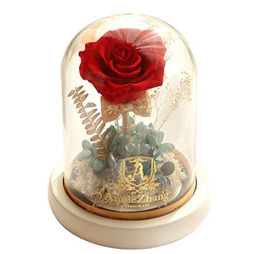 SOLUSTRE Rosa Eternal Rose Beauty and The Beast Rose Preserved Rose In The Glass, Presentes de flor de rosa real para Dia dos Namorados, casamento, Natal, sem bateria (vermelha)