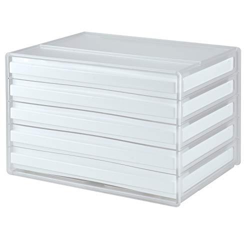 livinbox A4レターケース 書類ケース 小物整理収納 (��-浅5段, 本体: 透明, 引き出し: 白い)